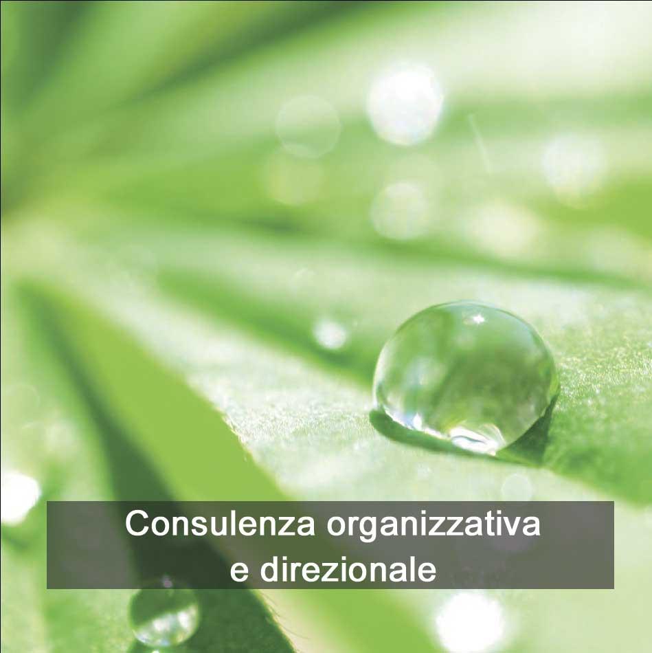 consulenza1